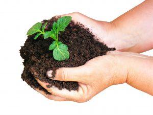 SEL-de-Table soutient l'agriculture locale